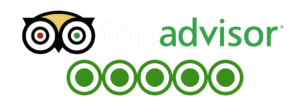 linked minds opiniones tripadvisor escape room madrid
